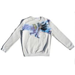 Sweatshirt applications...